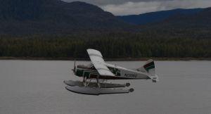 c8-beaverplane.jpg